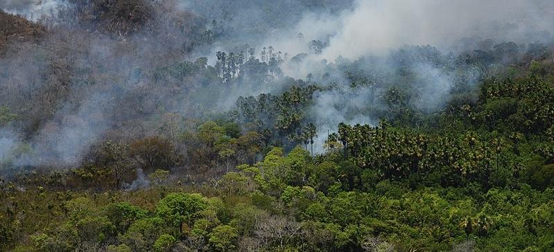 Terriório indígena no Maranhão/ Ibama/ CC