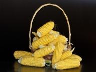 7 coisas feitas com milho que não são de comer