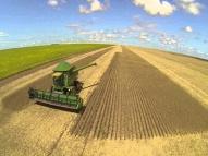 Empregos no agronegócio se mantiveram estáveis em 2018