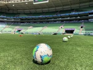 STJD mantém a realização da partida Palmeiras x Flamengo