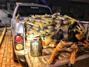 600 quilos de maconha são encontrados por cão farejador