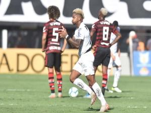 Santos goleia o Flamengo e termina o Brasileirão como vice