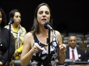Comissão rejeita proposta sobre crime ambiental