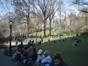Nova York proibirá carros no Central Park