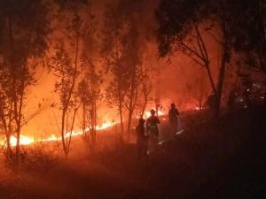 Incêndio florestal deixa 19 mortos na China