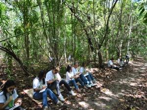 Projeto Educação Ambiental inscreve para novos cursos